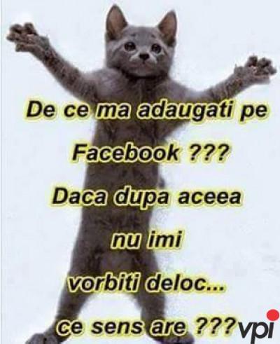 Intrebare pentru prietenii de pe Facebook