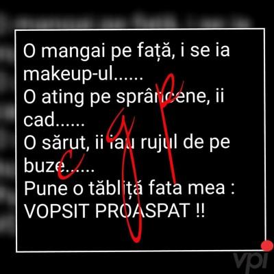 Proaspat Vopsit!