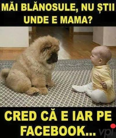 Unde e mama?