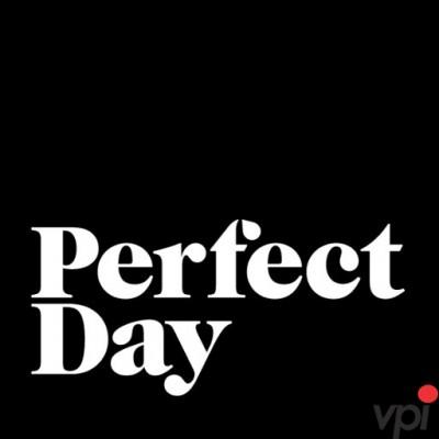O zi perfecta pentru barbat