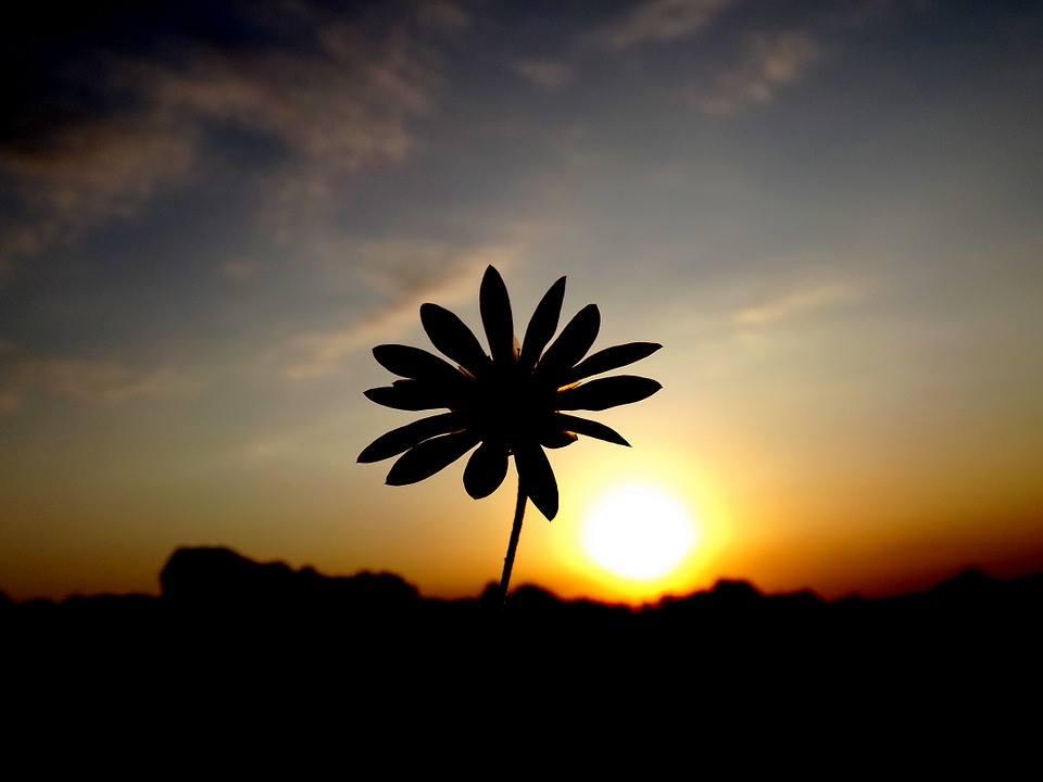 Apusul Soarelui