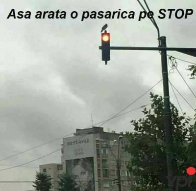 Cand e pe stop