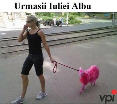 Fanii Iulia Albu