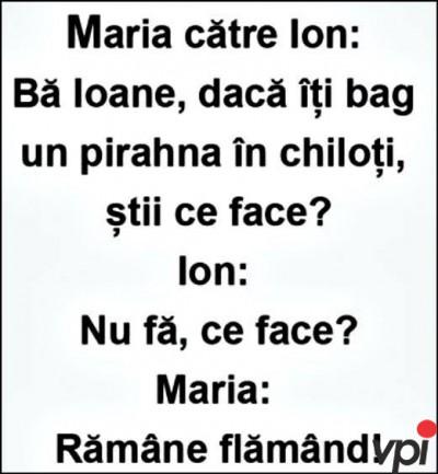 Ion si Maria