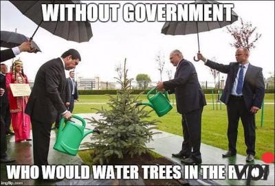 Tara fara Guvern...