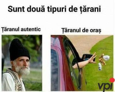 Tipuri de tarani
