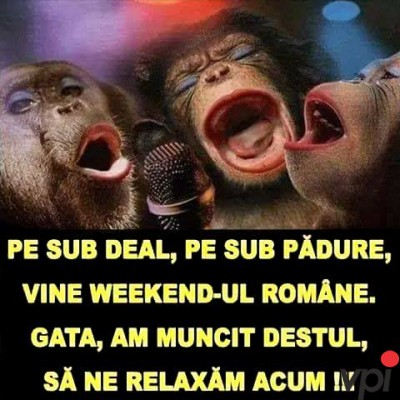Vine Weekend-ul!
