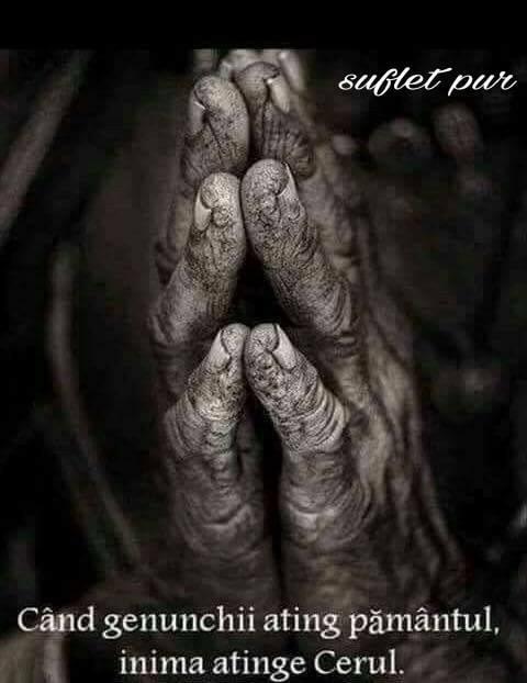 Roagă-te cu devotament