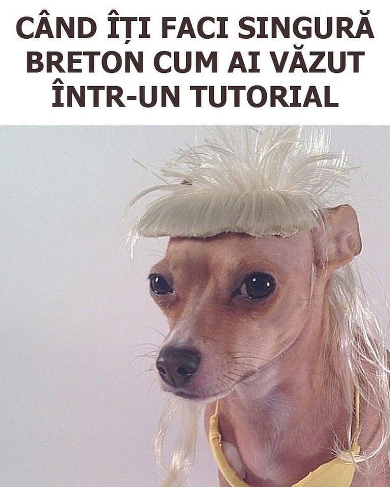 Cand iti faci singura breton