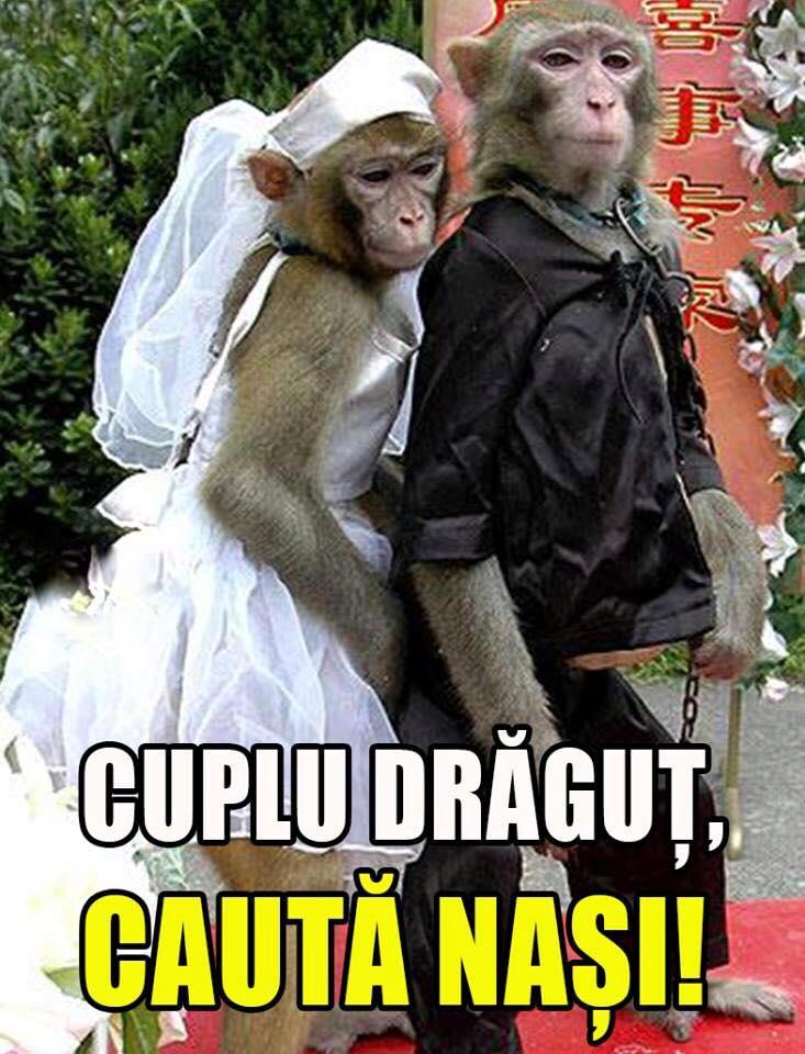 Cuplu dragut!