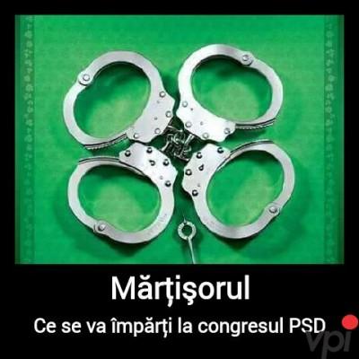 Martisor pentru PSD