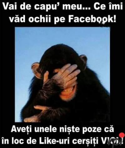 Ce vad pe Facebook