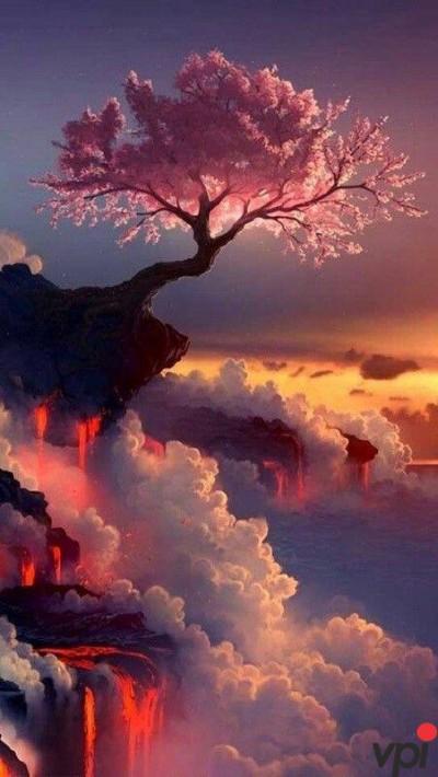 Frumusetile naturii
