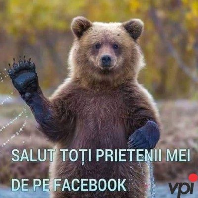 Salut prietenii de pe Facebook!