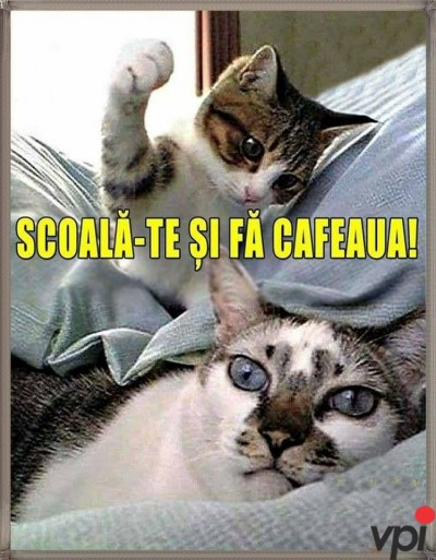 Scoala-te si fa cafeaua!