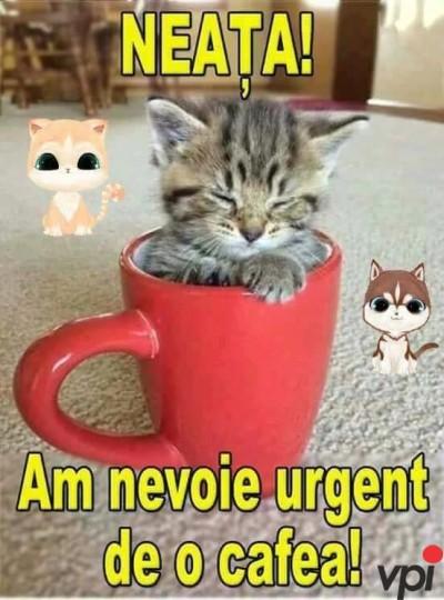 Vreau o cafea!