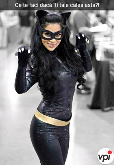 Daca iti taie calea pisica neagra