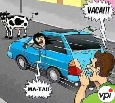 Vaca pe strada