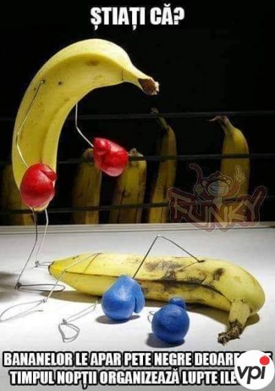 Petele negre de pe banane