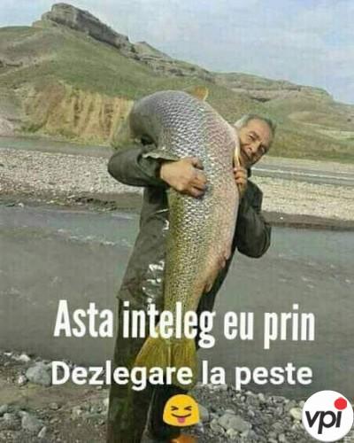 Dezlegarea la pește