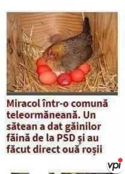 Miracol de Paște