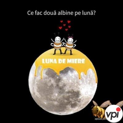 Pe Lună