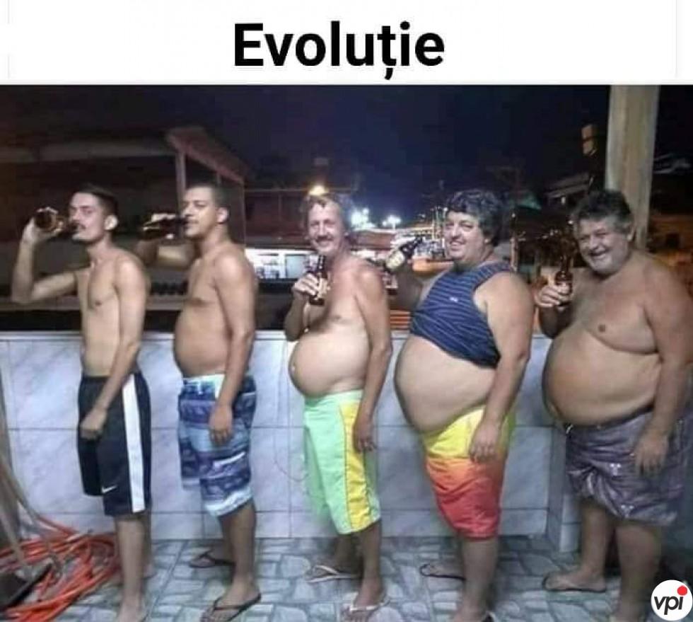Evoluție