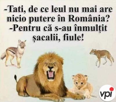 Puterea Leului