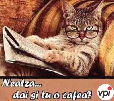 Neața! Dai și tu o cafea?