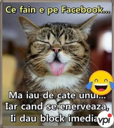 Viața pe Facebook