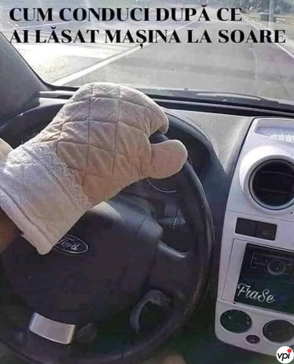 Cum conduci vara