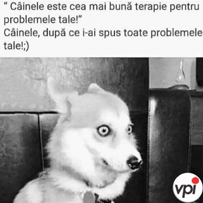 Toate problemele tale