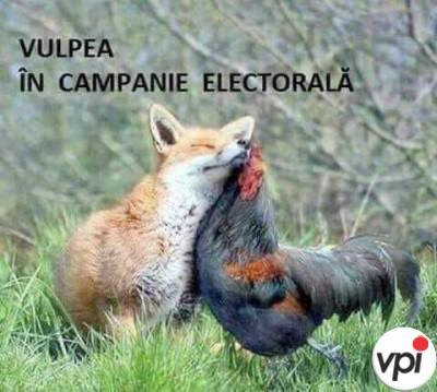 Cum se face campanie electorală