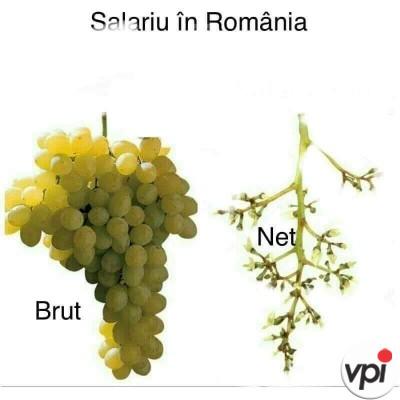 Salariu în România