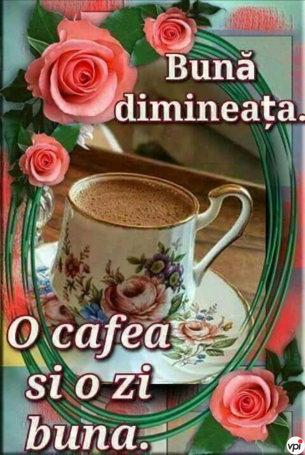 Bună dimineața! O zi bună!