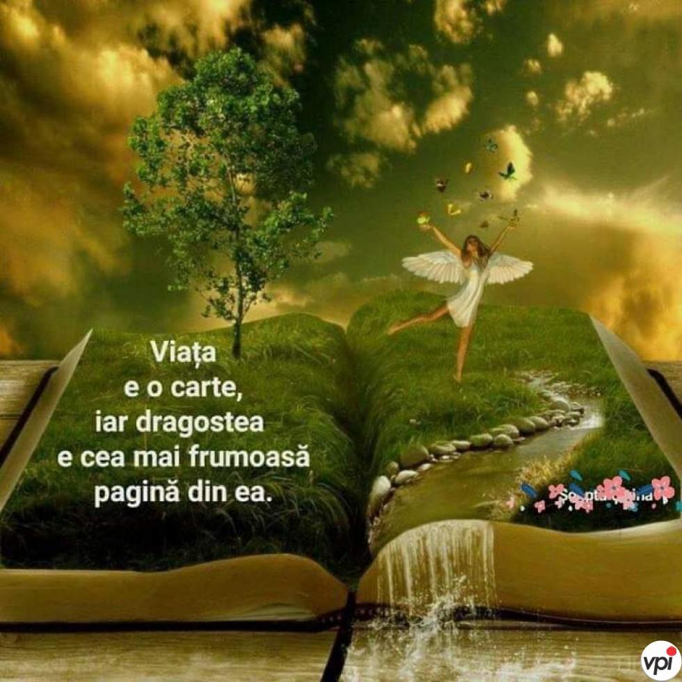Viața este o carte