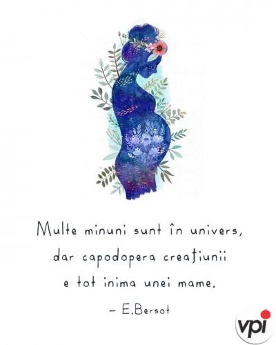 Inima unei mame