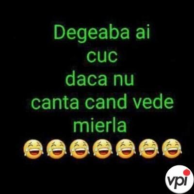 Degeaba