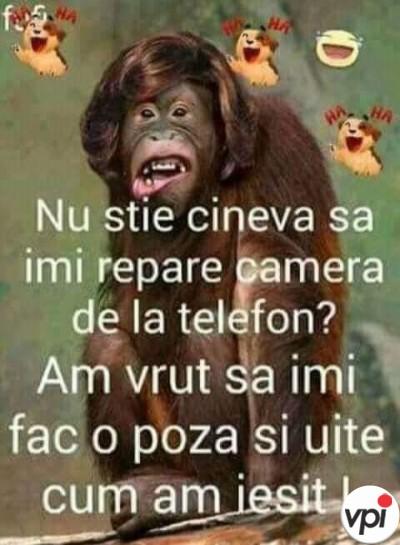 Camera de la telefon