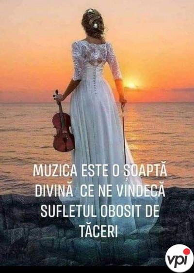 Ce reprezintă muzica