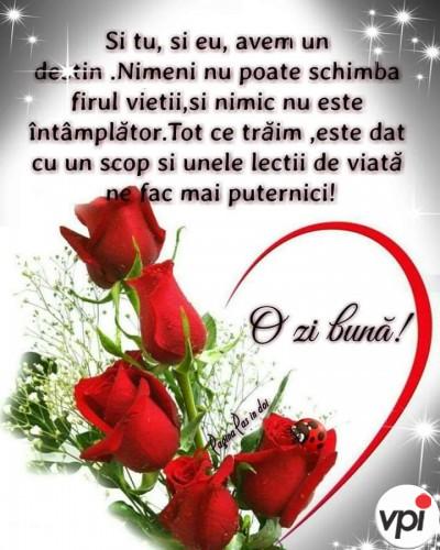 Vă doresc o zi bună!