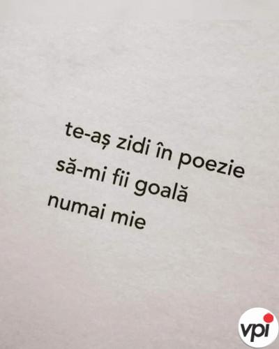 Te-aș zidi în poezie