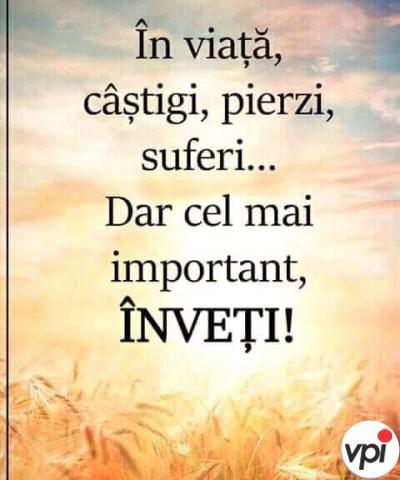 Ce e important în viață