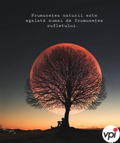 Frumusețea naturii este egalată de frumusețea sufletului