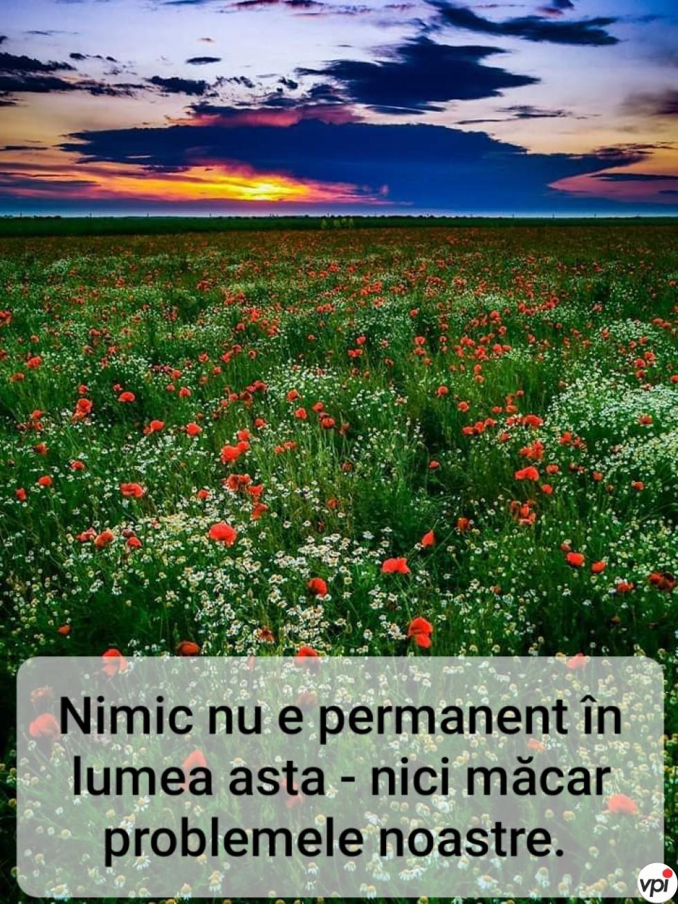 Nimic nu e permanent în lumea asta