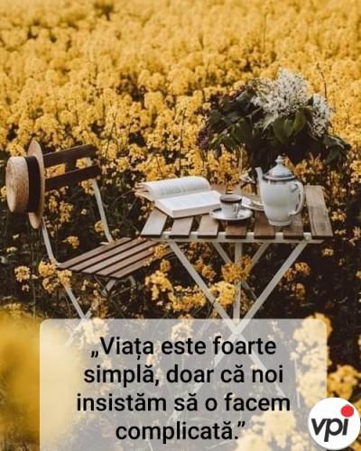 Viața este simplă