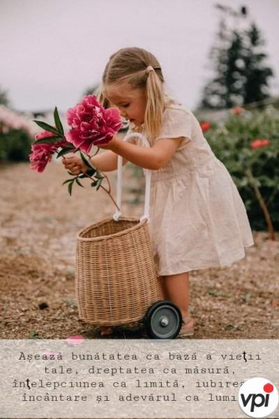 Bunătatea este baza vieții