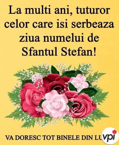 La mulți ani de Sf Ștefan!