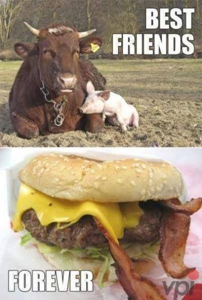 Cei mai buni prieteni pentru totdeauna