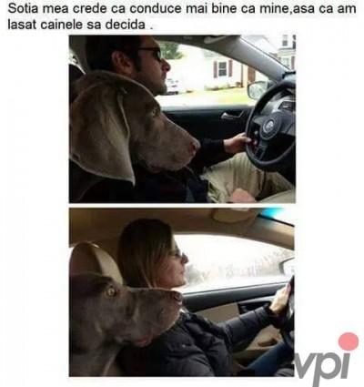 Cine conduce mai bine
